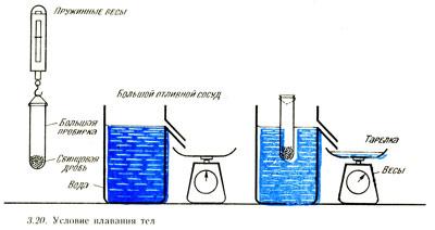 На картинке показана проверка условия плавания тел