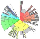 Лучевые диаграммы